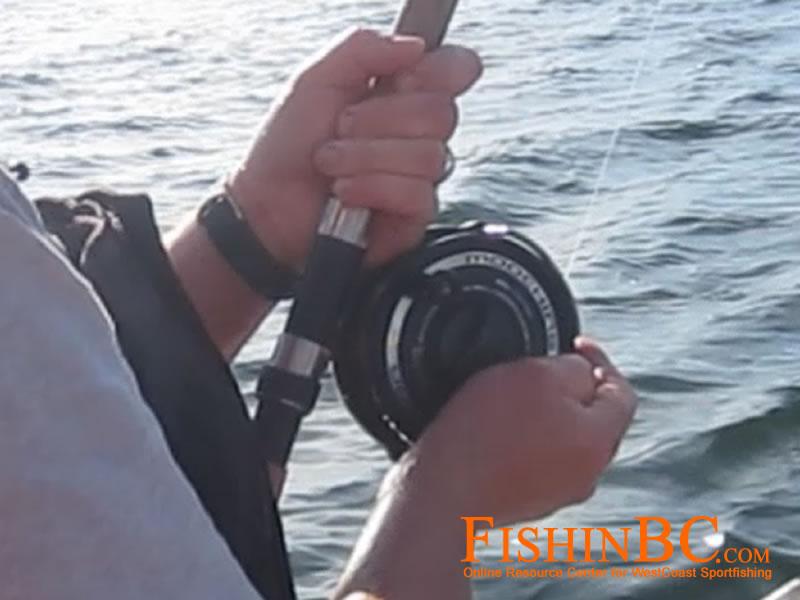 10 tips salmon fishing with barbless hooks for Salmon fishing tackle setup