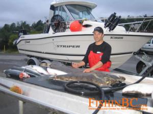 Halibut Fishing 8 - Filleting halibut