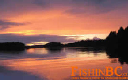 Prince Rupert Fishing 2008 – Springs and Sunsets