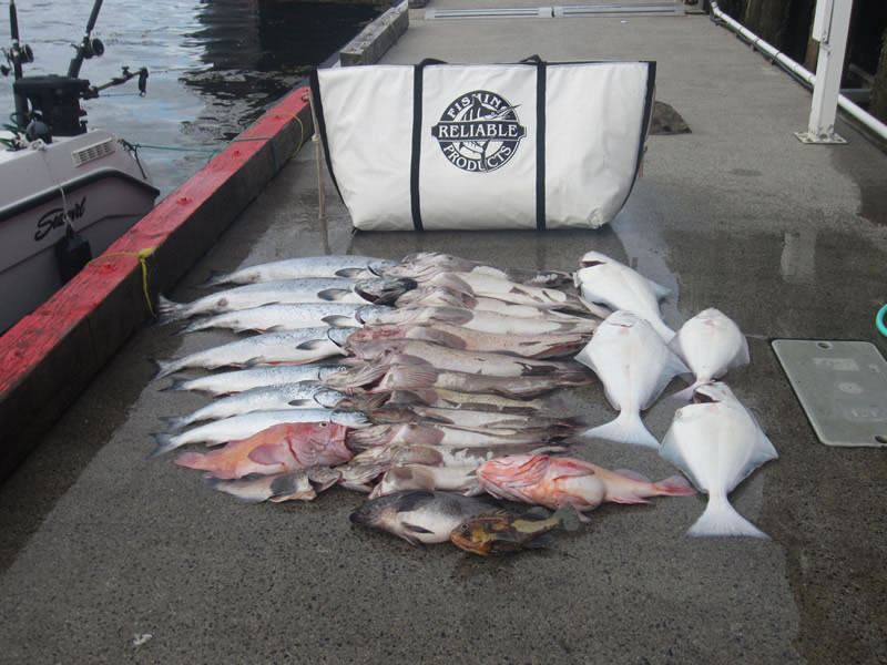Fish Kill Bag Review Highly Recommended For Westcoast