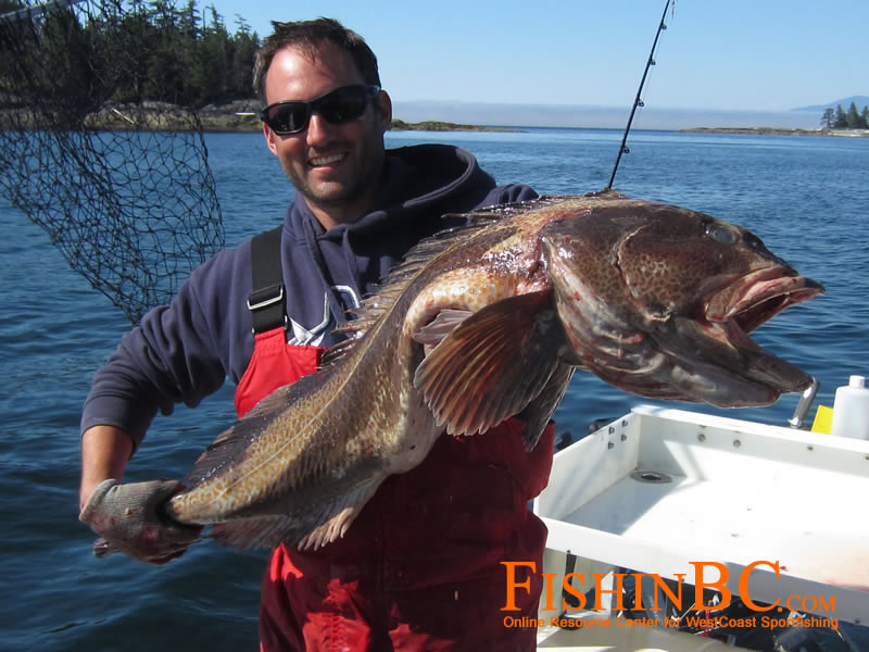 Lingcod Fishing Tips - Catch More Lingcod!
