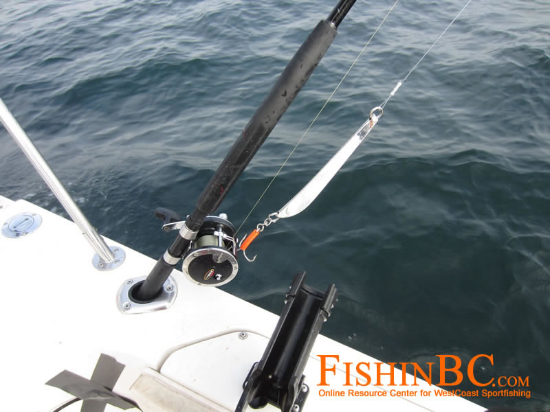 Lingcod fishing tips catch more lingcod for Cod fishing rigs