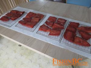 Smoked salmon on drying racks